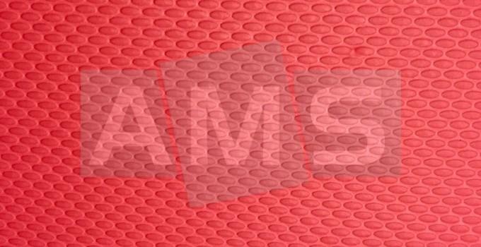 4bcf724c3f57f5 Placa Microporosa Lisa | AMS