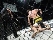 O crescimento do mercado de artes marciais no Brasil